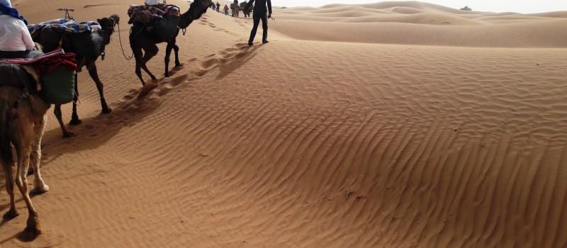 En el Desierto: ni viaje ni retiro, pero los dos a la vez