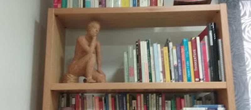 LECTURES PER L'ESTIU: Proposicions honestes per llegir una mica de tot