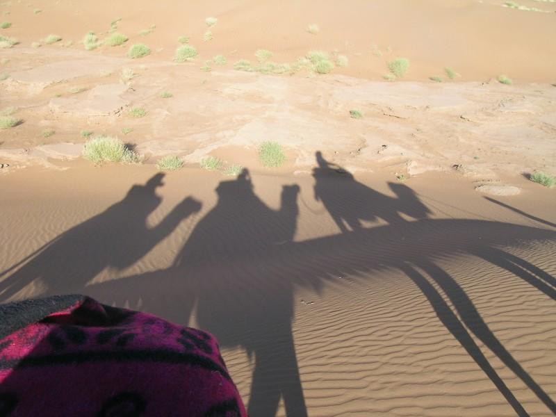 DESPRÉS DEL DESERT. Viatjar sense viatjar