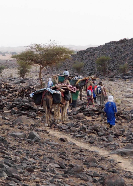 Caravana en el Desert. Viatjar com a experiència transformadora